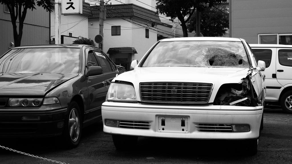 Photo by MIKI Yoshihito. (#mikiyoshihito) on Foter.com / CC BY