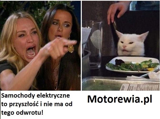 Motorewia elektryczne